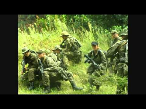 SOS  Commando  2013