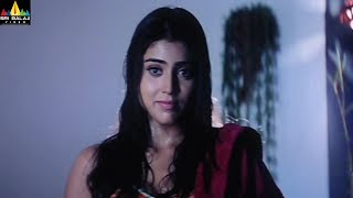 Bhageeratha Movie Shriya Saran Intro Scene | Telugu Movie Scenes | Ravi Teja | Sri Balaji Video - SRIBALAJIMOVIES