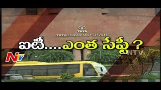 Is Software Job Safe for Employees? || NTV - NTVTELUGUHD