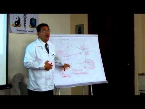 Auriculoterapia Puntos para Colitis