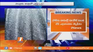 16 Red Sandalwood Smugglers Held in Nellroe | One Core Worth Sandalwood Recovered | iNews - INEWS
