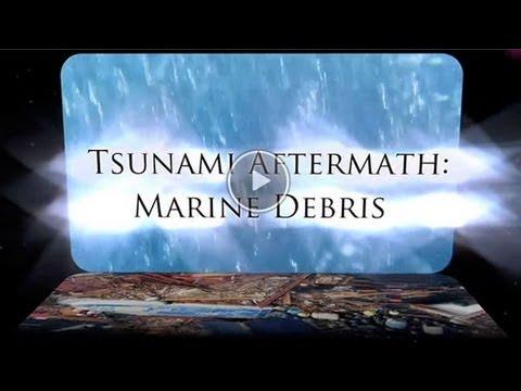 Tsunami Aftermath: Marine Debris