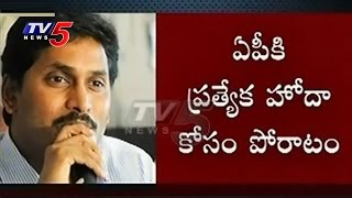 """YCP Leaders To Raise """"AP Special Status"""" Issue In Parliament Sessions"""