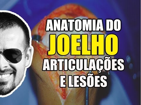 Vídeo Aula 101 - Anatomia Humana - Joelho: Anatomia, Articulações e Lesões do LCA e Meniscos