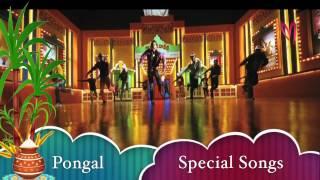 Pongal Special Songs -- Happy Sankranthi - MAAMUSIC