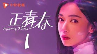 正青春 (47集全)