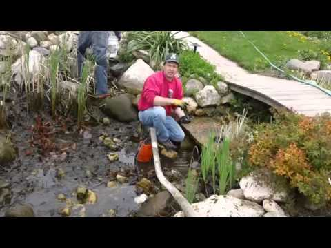 Hurth Waterscapes Spring Pond Clean Out