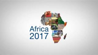 Role of young entrepreneurs in Africa's growing business landscape - ABNDIGITAL