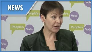 Caroline Lucas calls for People's Vote second referendum - THESUNNEWSPAPER