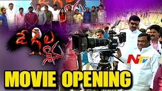 Degala Seenu Movie Opening    NTV - NTVTELUGUHD