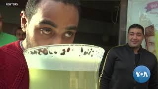 Sweet Stunt Skyrockets Sales at Egyptian Family Juice Shop - VOAVIDEO