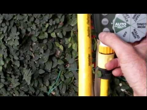 Irrigação automática de jardim