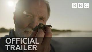 Nature's Turtle Nursery: Inside the Nest | Trailer - BBC Four - BBC