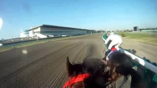 第5回模擬レースヘルメットカメラ(@中山競馬場)【伴 啓太】.mp4