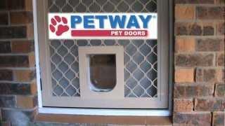 Petway Pet Doors   DIY Fitting Instructions   Aligning Security Screen Pet  Door With Timber Pet Door   YouTube