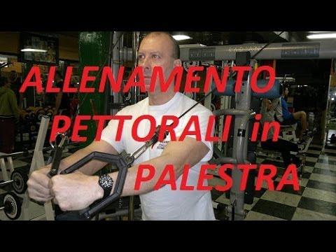 Allenamento PETTORALI in Palestra - YouTube -