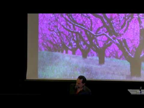 Essential Oils As Expressions Of Botanical Intelligence with David Crow, NAHA Conference