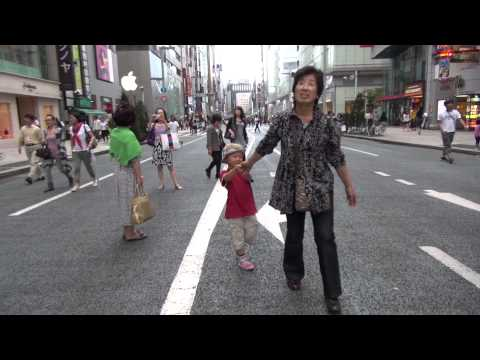 Walking Ginza Pedestrian precinct (Japanese Tourism)