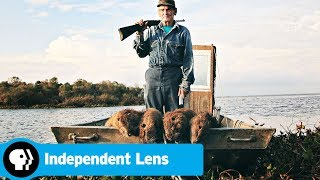 INDEPENDENT LENS | Rodents of Unusual Size | Trailer | PBS - PBS