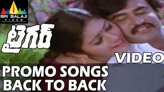 Tiger Movie Video Songs Back to Back | NTR | Radha Saluja | Subhashini | Sri Balaji Video - SRIBALAJIMOVIES