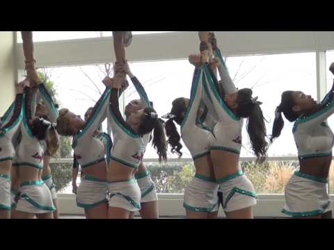 Cheer Extreme Lady Elite 2012  2013