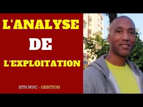 L'analyse de l'exploitation