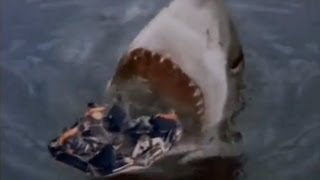 Shark Attack 3: Megalodon. Ремонт