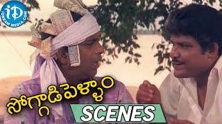 Soggadi Pellam Movie Scenes || Brahmanandam Funny Comedy Scene - IDREAMMOVIES
