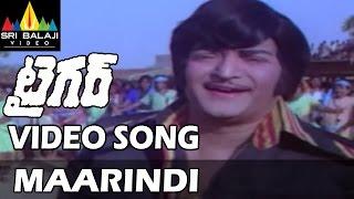Tiger Movie Maarindi Maarindi Video Song | NTR | Radha Saluja | Subhashini | Sri Balaji Video - SRIBALAJIMOVIES
