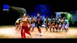 Chiranjeevi Hit video song mirapakaya bajji   from Anji - MALLEMALATV