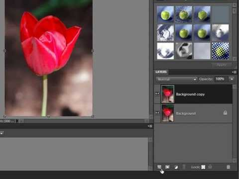 How to Remove a Background in Photoshop Elements