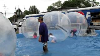 Glennis in a giant inflatable water-bound hamster ball view on youtube.com tube online.