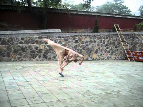 Shaolin Tiger form -2-KM5QomOSo