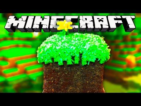 MINECRAFT CAKE NERDY NUMMIES