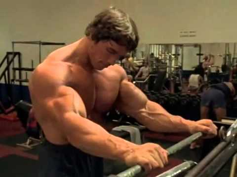 Arnold in Gym   Arnold Schwarzenegger Bodybuilding Wallpapers Posters and Pictures   Arnold Schwarzenegger Gym Body and Exercising Pictures Young Age   desihotmasala com -23xcaWBORd8