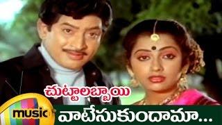 Vaatesukundhama Telugu Video Song | Chuttalabbai Telugu Movie Songs | Krishna | Radha | Suhasini - MANGOMUSIC