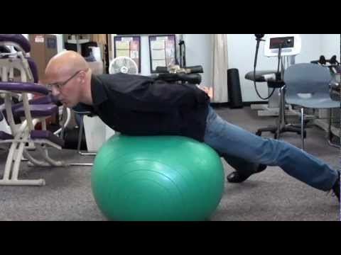 Lower Back Pain / Herniated Disc / Pinched Nerve Strengthening with Fitness Ball / Dr. Mandell