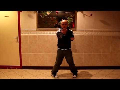 Wing Chun/Ving Tsun ( 詠春) - First Form - Siu Nim Tau (小念頭)