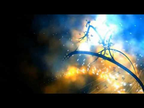 Rob Transini - music,  Glenn Marshall (Metamorphosis exerpts) - video,