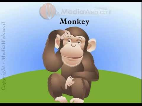 Learn ABC Zoo Animal Video for Kids &amp; Babies  By   Web design Animation SEO