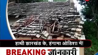 Morning Breaking: Jharkhand elephants destroy houses and crops in Odisha - ZEENEWS