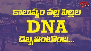 Traffic Pollution To Damage DNA In Kids - TELUGUONE