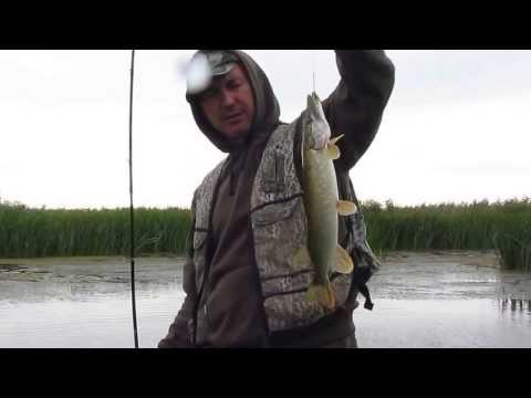 рыбалка получи волго каспийском канале