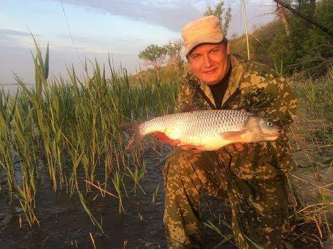 чем ловить рыбу на волге с берега