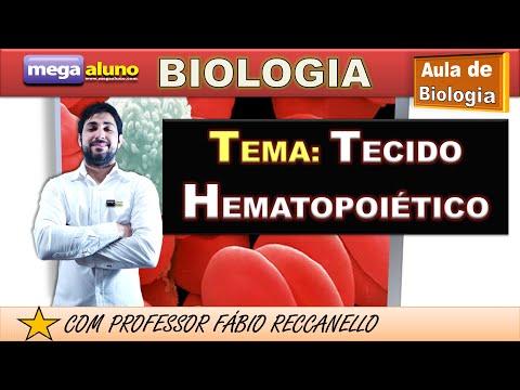 Tecido Sanguíneo (aula atualizada-2014)
