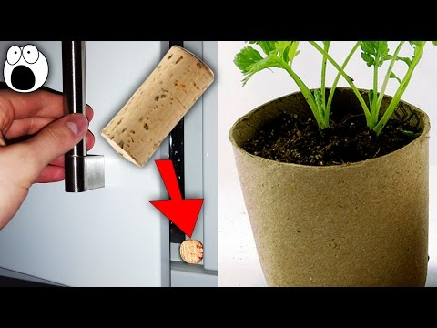 20 Amazing New Uses For Used Everyday Items