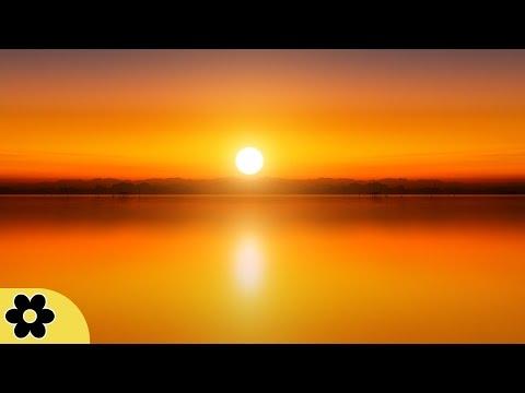 8 Hour Deep Sleep Music, Peaceful Music, Relaxing, Meditation Music, Sleep Meditation Music, ✿2822C
