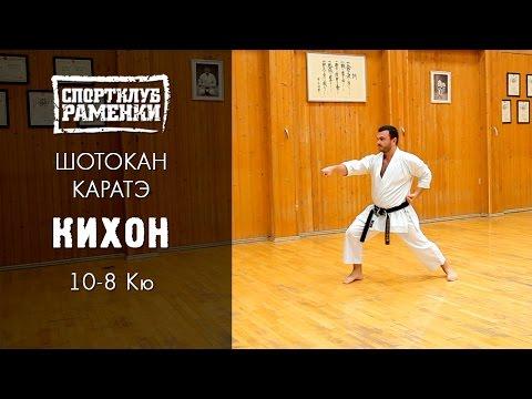 Shotokan video download