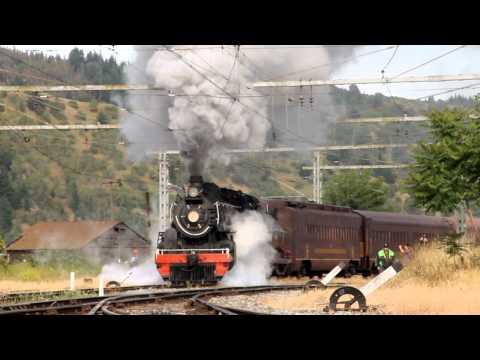 Tren de la Araucania en San Rosendo