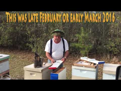 Bullying A Beekeeper And Truck Stop Bees